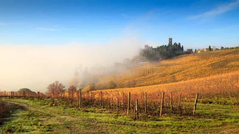 Chianti葡萄园风景在与雾, Passignano的秋天 免版税库存图片