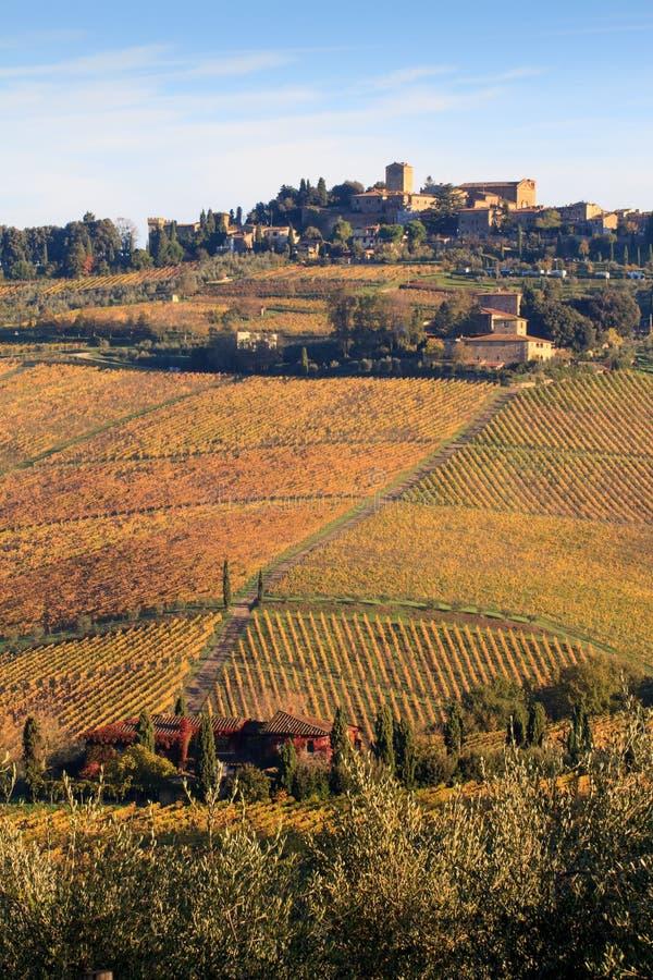 Chianti葡萄园风景在秋天,托斯卡纳,意大利 免版税库存照片