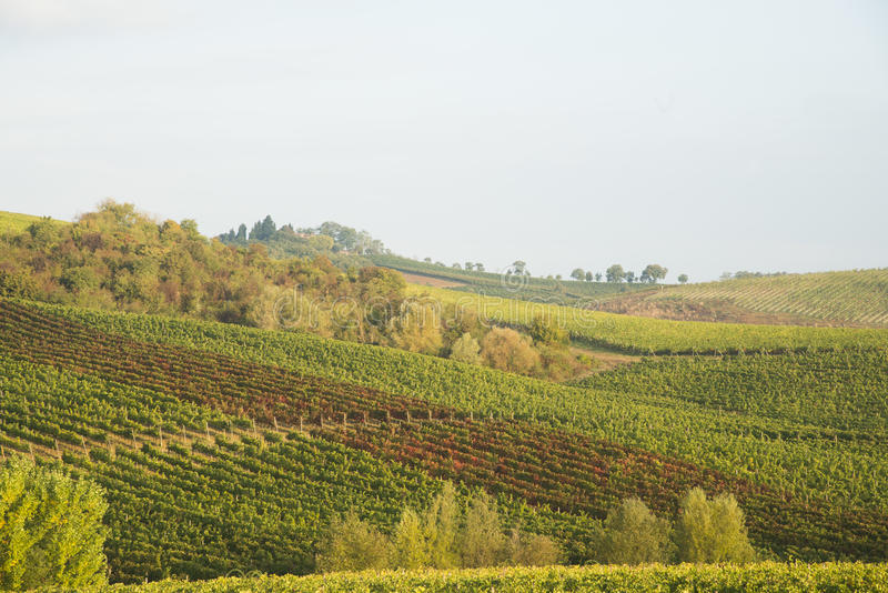 Chianti in Autumn stock photos