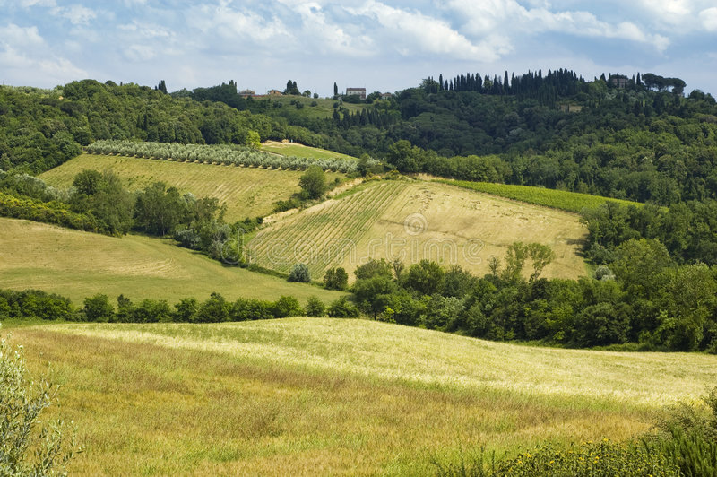 Chianti Landschaft lizenzfreie stockbilder