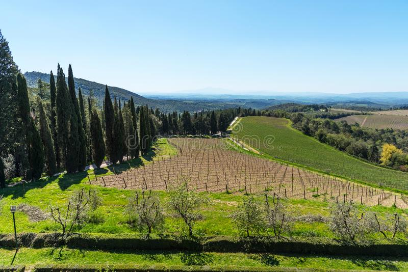 Chianti Region, Italy - April 21, 2018: Farmland rural landscape, cypress trees, vineyards and olive trees from Castello di Brolio stock images