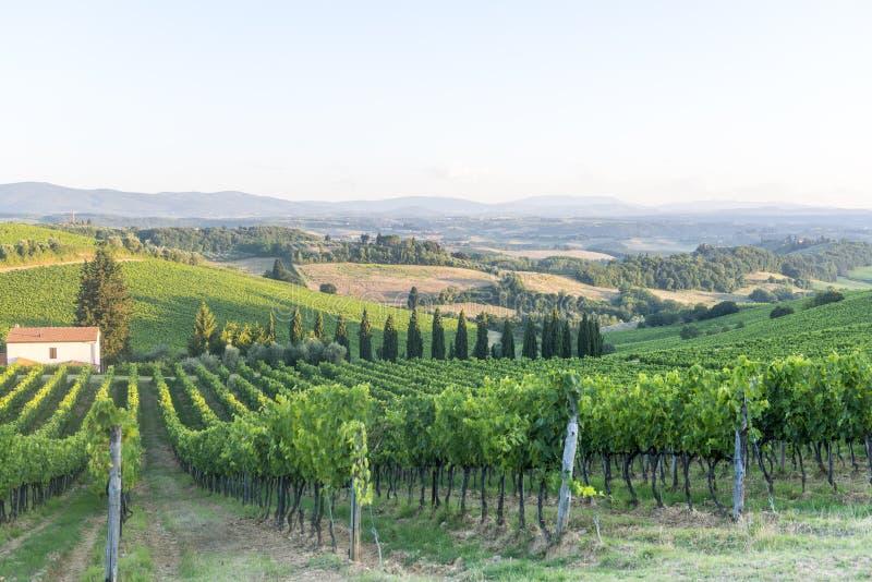 Chianti, Toscana imagen de archivo libre de regalías