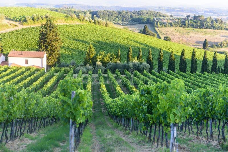 Chianti, Toscane photo libre de droits