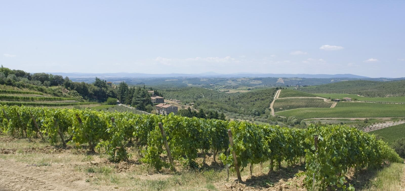Chianti in Toscanië stock foto's