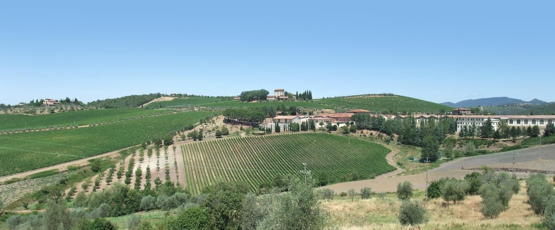 Chianti in Toscanië stock afbeeldingen