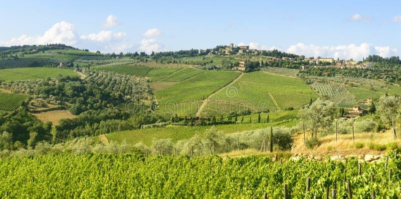 Chianti, Toskana stockfoto