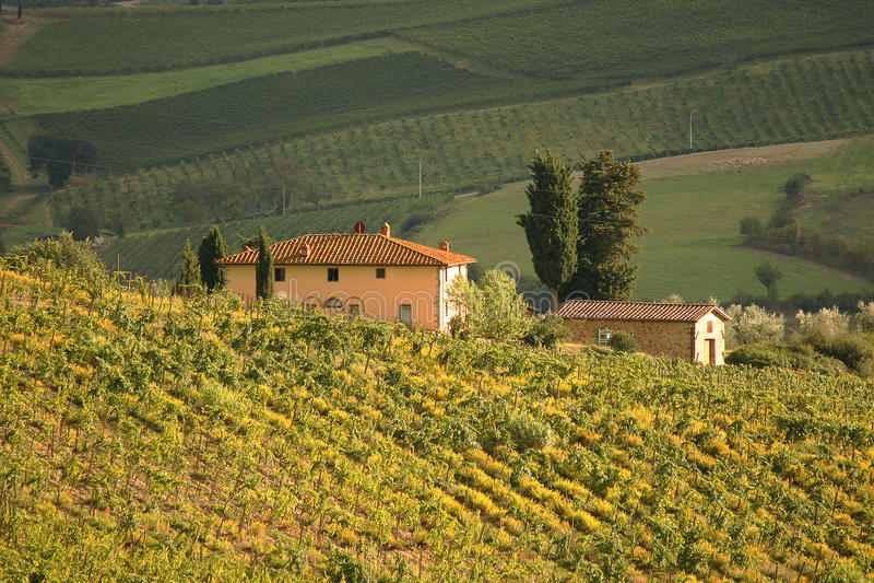 Chianti, Tuscany, Italy royalty free stock photography