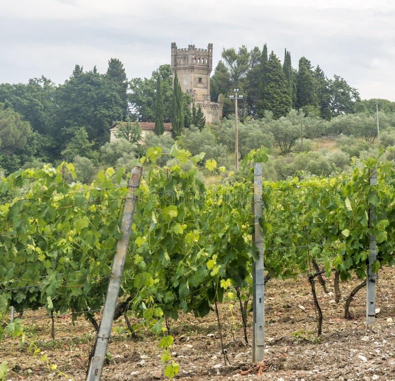 Chianti, Tuscany stock image