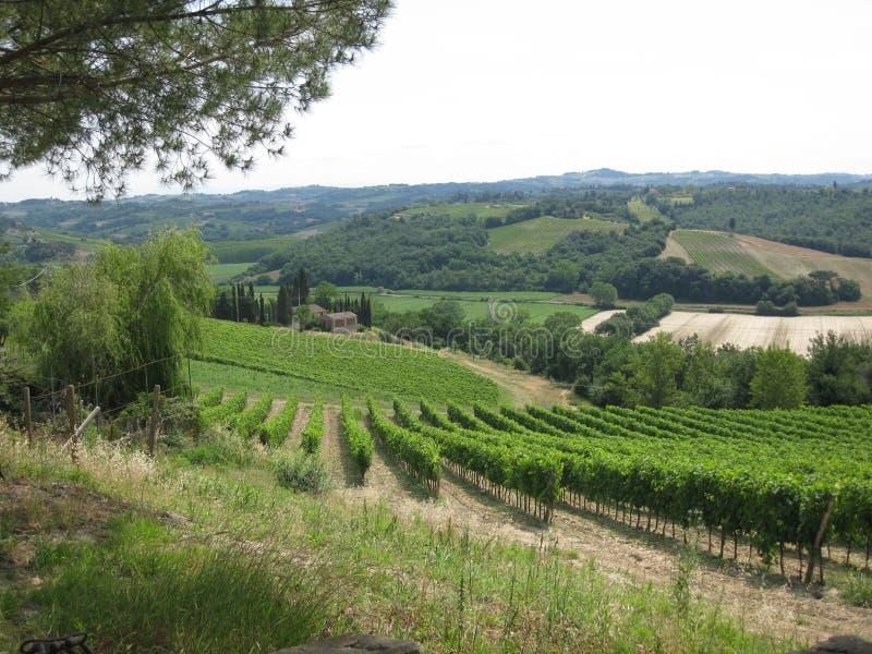 Chianti Tuscany landskap royaltyfria foton