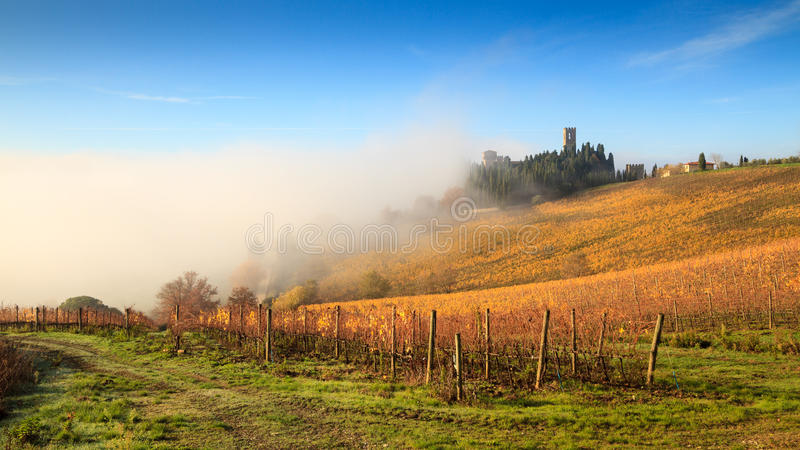 Chianti vineyard landscape in autumn with fog, Passignano royalty free stock images