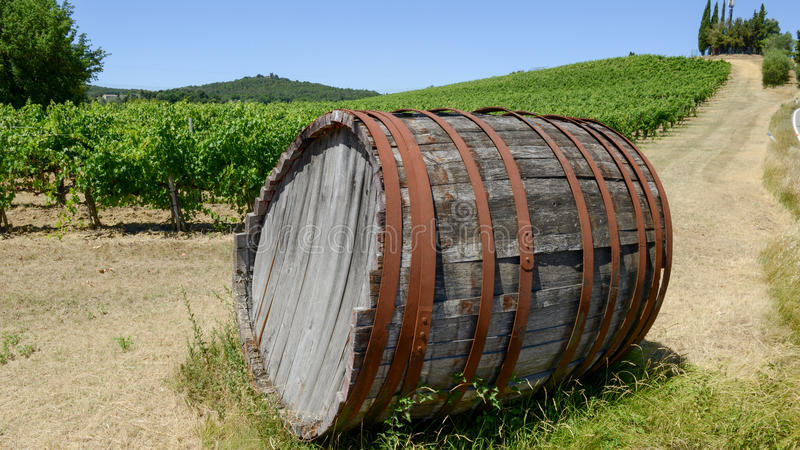 Chianti wine barrel on a Wineyard in Tuscany royalty free stock photography
