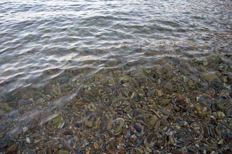 Chiare rocce del mare & dell'acqua immagini stock