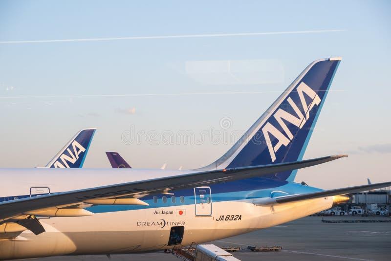 Chiba, Japão - 24 de março de 2019: Ideia do plano de ANA ou de All Nippon Airways, a linha aérea a maior em Japão com base no ta fotos de stock royalty free
