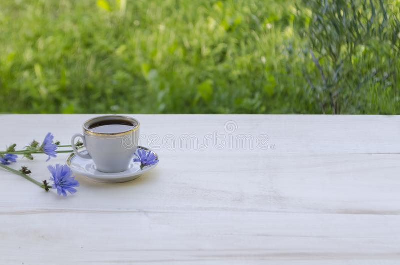 Chicória da bebida em um copo branco e em umas flores azuis da chicória da planta em um fundo de madeira branco imagem de stock royalty free