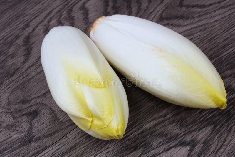Chicória da salada imagem de stock