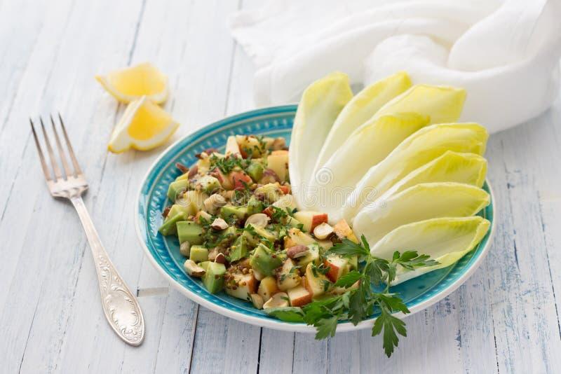 Chicória fresca das folhas com uma salada do abacate, da maçã, das porcas e da salsa fotos de stock royalty free