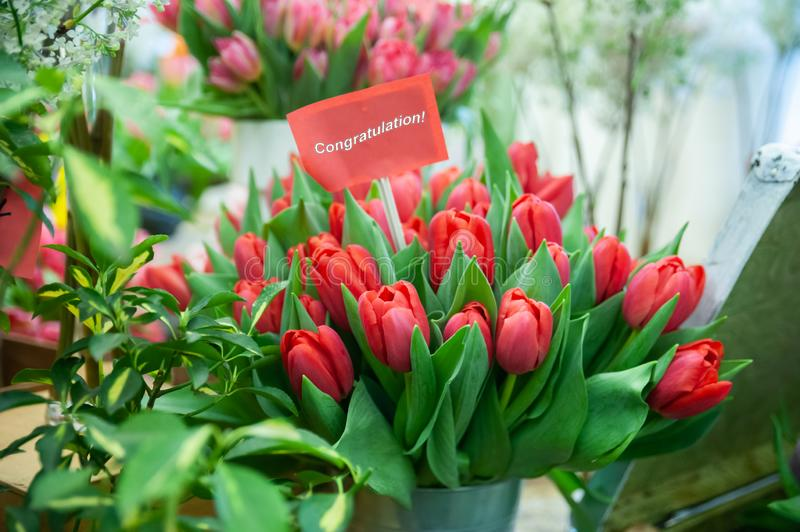Chic bouquet of red tulips with the inscription congratulations . Greeting card , Hello Spring and Woman day stock photography