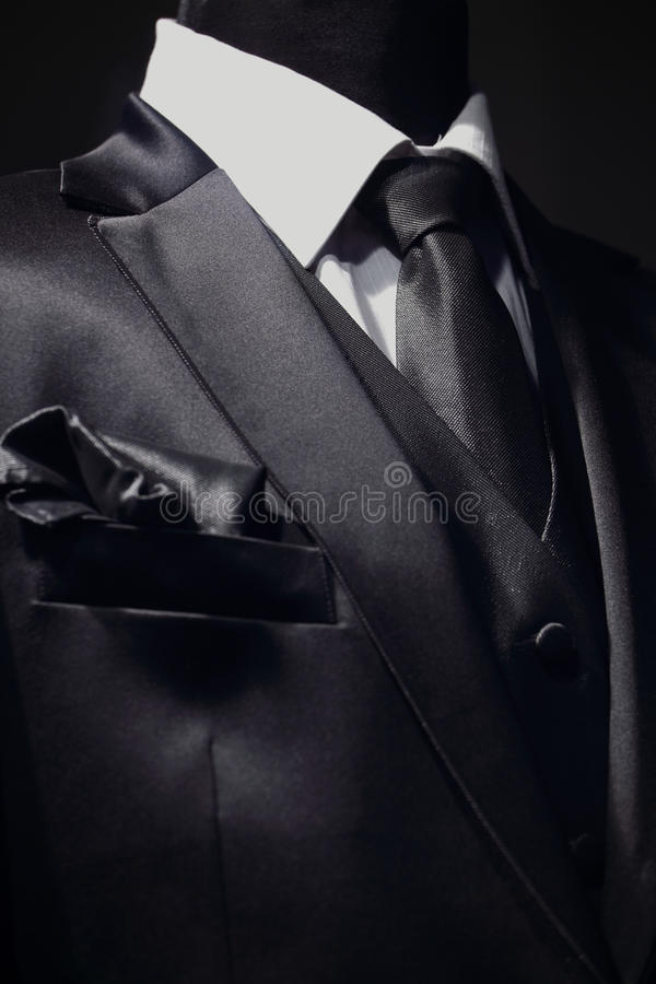Download Chic and stylish suit stock image. Image of retail, necktie - 15145945