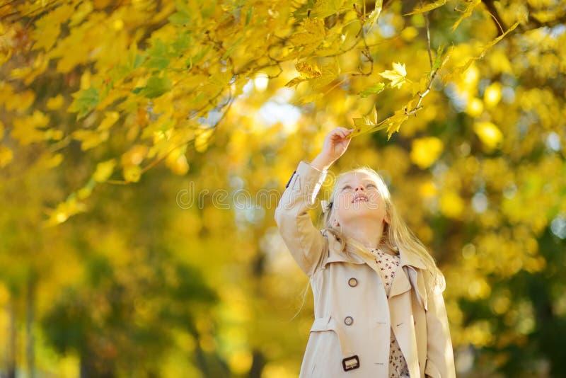 Chica joven adorable que se divierte en día hermoso del otoño Ni?o feliz que juega en parque del oto?o Ni?o que recolecta el foll fotografía de archivo