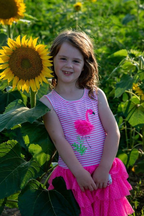 Chica joven alegre de la belleza con el girasol que disfruta de la naturaleza y que ríe en campo del girasol del verano Sunflare, foto de archivo libre de regalías
