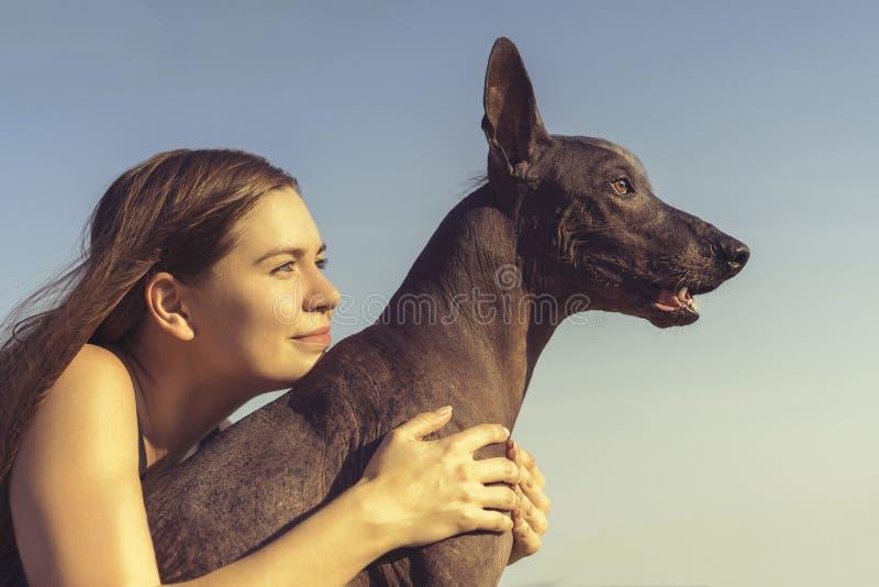 Chica joven bonita alegre que sienta y que abraza su xoloitzcuintli del perro en el cielo azul en la puesta del sol fotografía de archivo