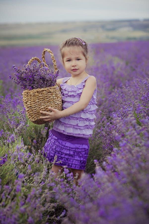 Chica joven bonita que se sienta en campo de la lavanda en navegante agradable del sombrero con la flor púrpura en ella fotografía de archivo