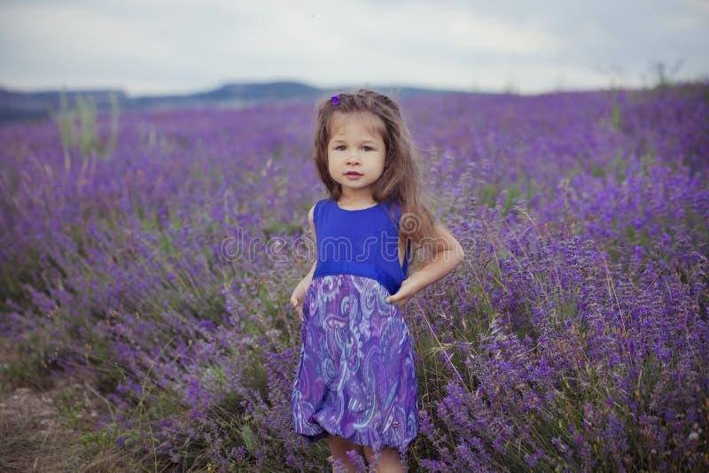 Chica joven bonita que se sienta en campo de la lavanda en navegante agradable del sombrero con la flor púrpura en ella imagen de archivo