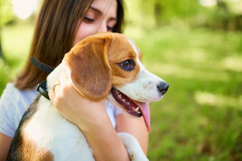 Chica joven con el beagle del perro en la hierba en el bosque fotos de archivo