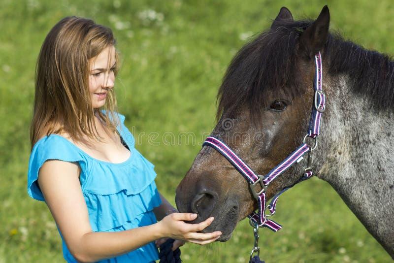 Chica joven con el caballo imágenes de archivo libres de regalías
