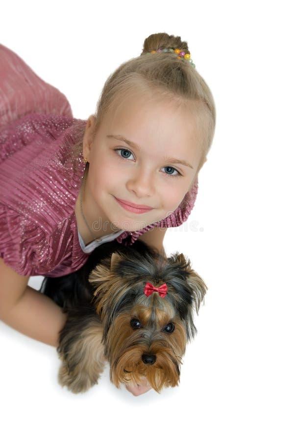 Chica joven con el perrito, terrier de Yorkshire lindo - mejores amigos foto de archivo libre de regalías