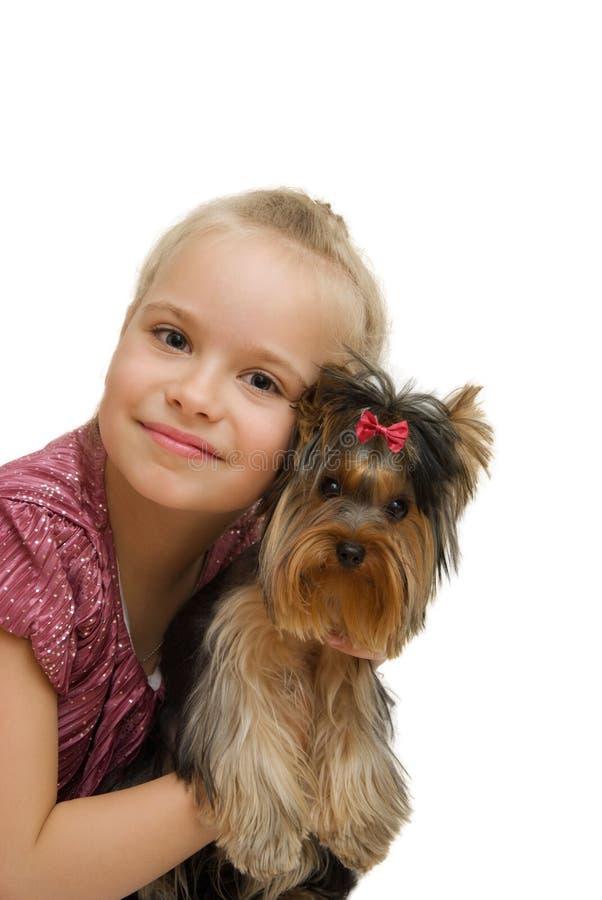 Chica joven con el terrier de Yorkshire lindo - mejores amigos foto de archivo