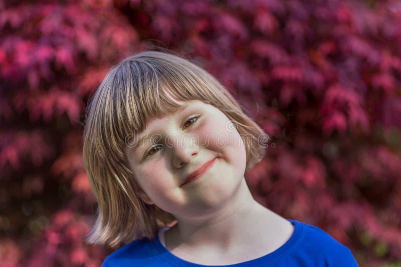 Chica joven con las hojas de arce rojas como fondo fotos de archivo libres de regalías