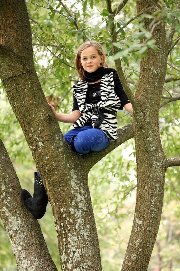 Chica joven en el árbol Lims fotografía de archivo