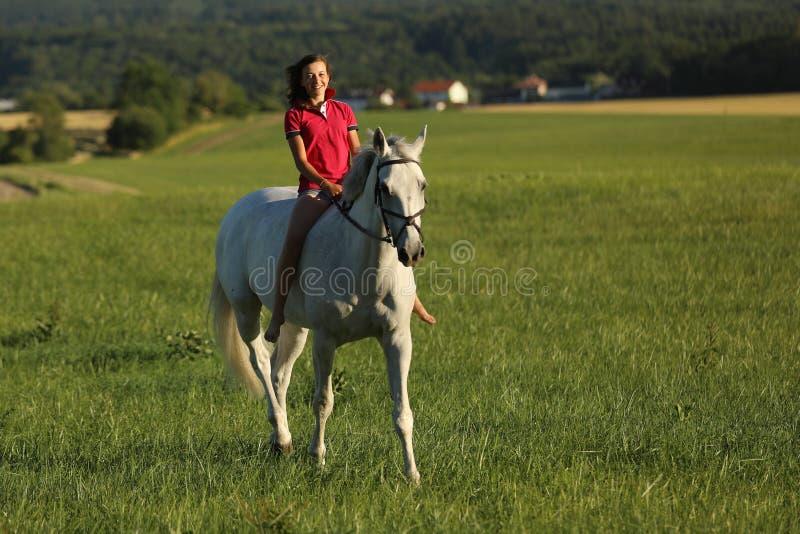 Chica joven en paseo melado del caballo en prado en última hora de la tarde sin la silla de montar imagenes de archivo