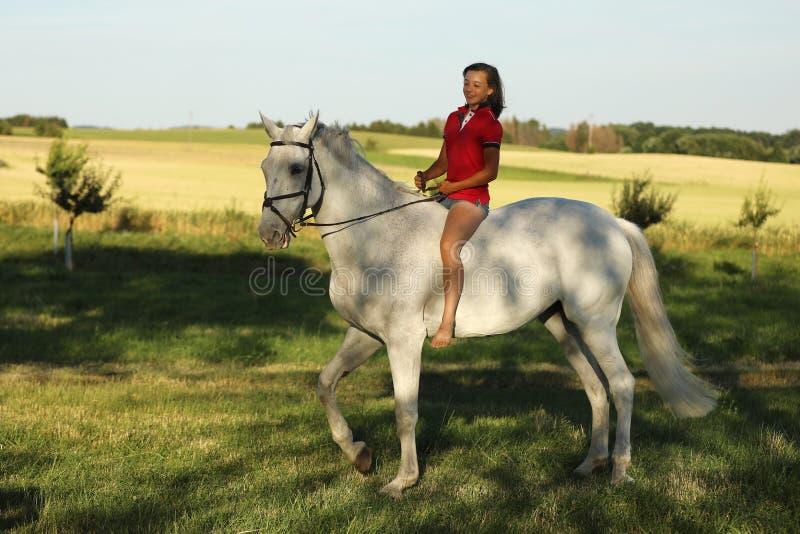 Chica joven en paseo melado del caballo en prado en última hora de la tarde sin la silla de montar, sol fotografía de archivo libre de regalías