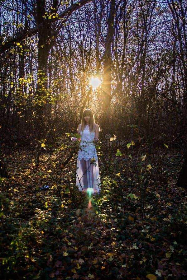 Chica joven en un bosque oscuro en un vestido blanco foto de archivo libre de regalías