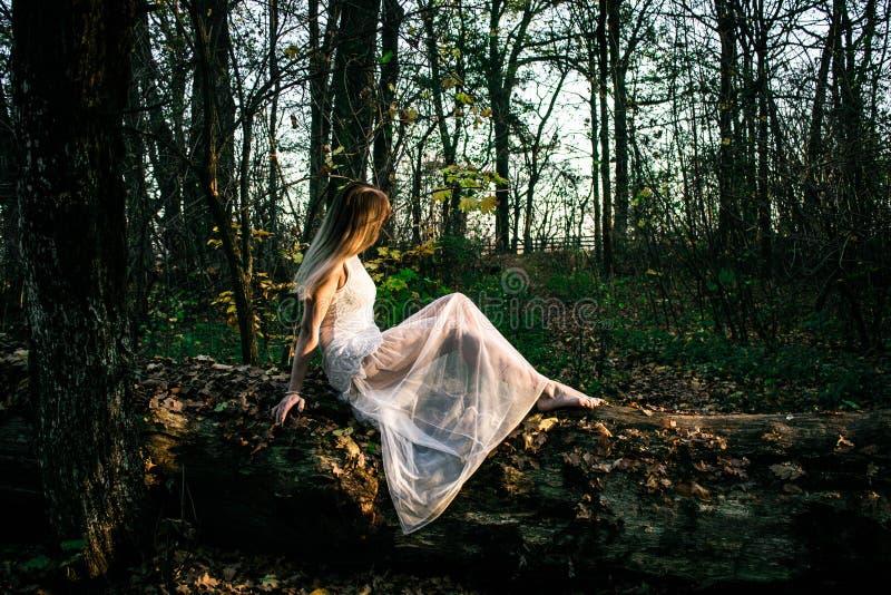 Chica joven en un bosque oscuro en un vestido blanco fotos de archivo