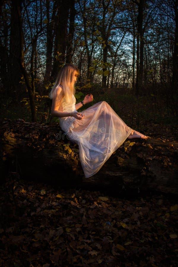 Chica joven en un bosque oscuro en un vestido blanco imagen de archivo