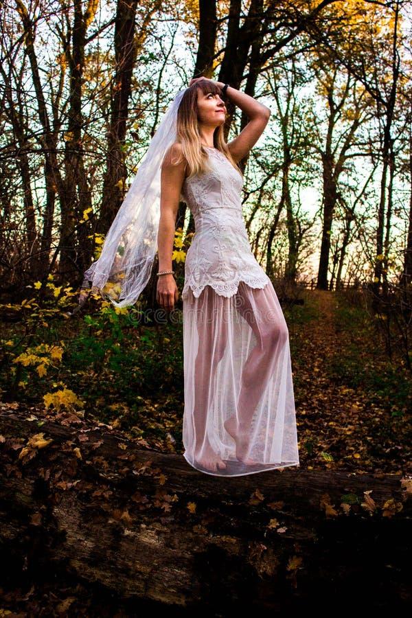 Chica joven en un bosque oscuro en un vestido blanco imágenes de archivo libres de regalías
