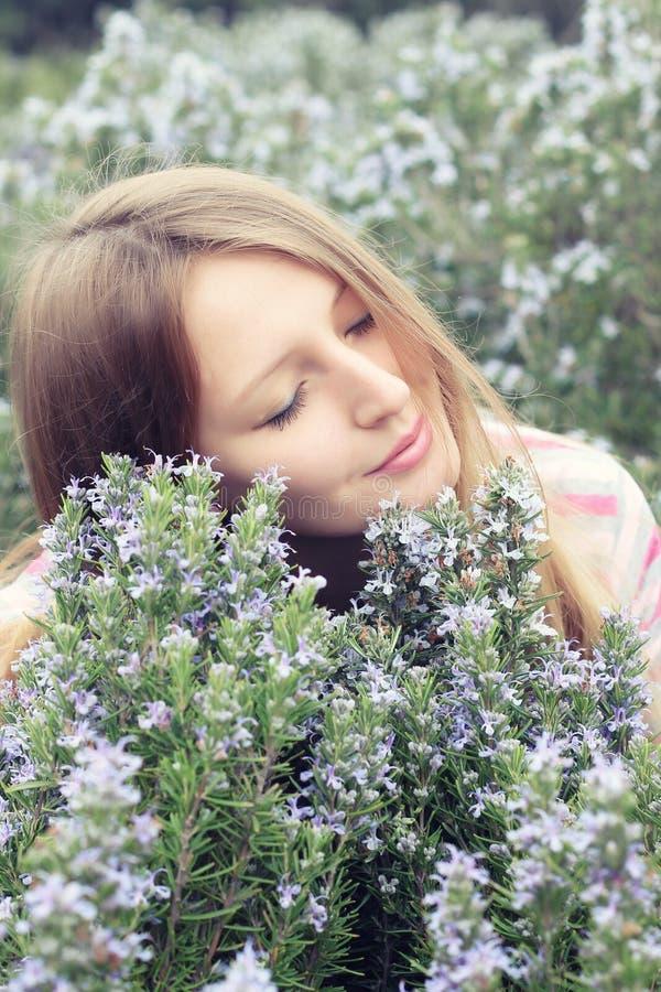 Chica joven hermosa en un campo de hierba del romero imágenes de archivo libres de regalías