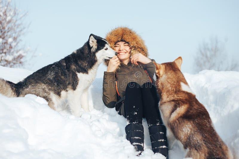 Chica joven feliz que abraza perros esquimales rojos y negros en invierno fotos de archivo libres de regalías