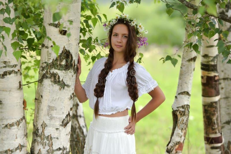 Chica joven hermosa con las trenzas y las margaritas imágenes de archivo libres de regalías