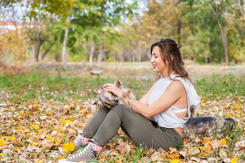 Chica joven hermosa con su perrito del perro del terrier de Yorkshire que goza y que juega en el día del otoño en el foco selecti foto de archivo libre de regalías