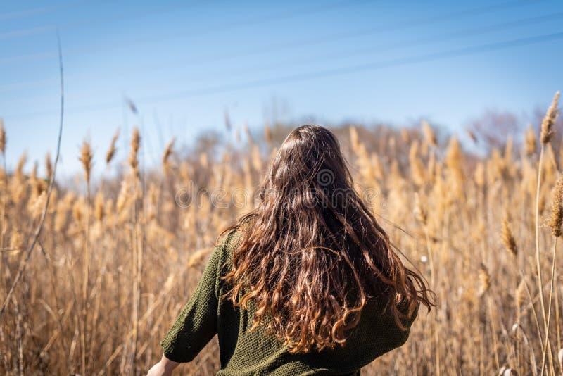 Chica joven hermosa en el campo y la sensaci?n de la naturaleza fotografía de archivo libre de regalías