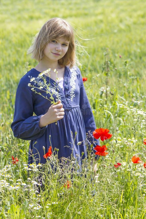 Chica joven linda en campo de la amapola foto de archivo