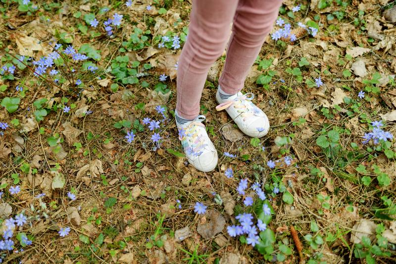 Chica joven linda que se divierte durante alza del bosque en día de primavera temprano hermoso Ocio activo de la familia con los  fotos de archivo libres de regalías