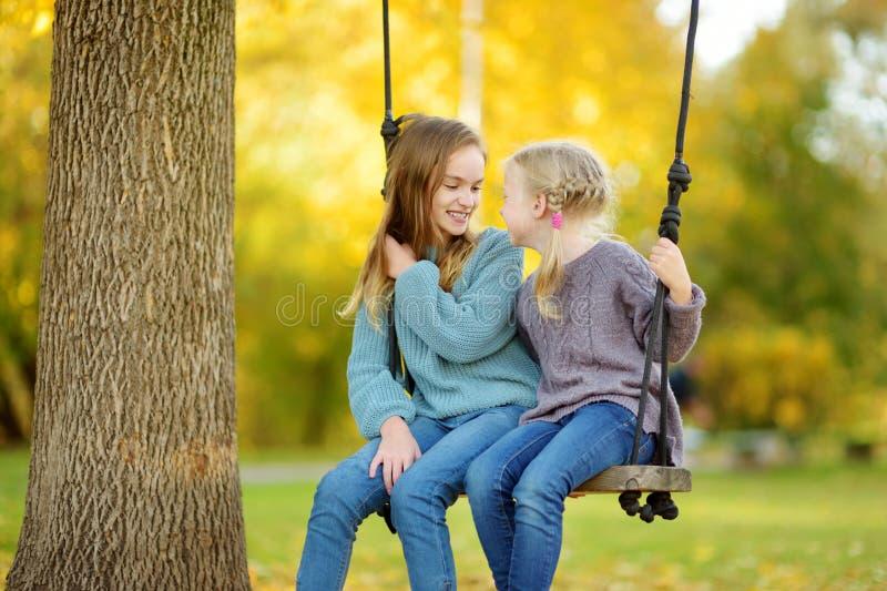 Chica joven linda que se divierte en un oscilación en parque soleado del otoño Fin de semana de la familia en una ciudad fotografía de archivo
