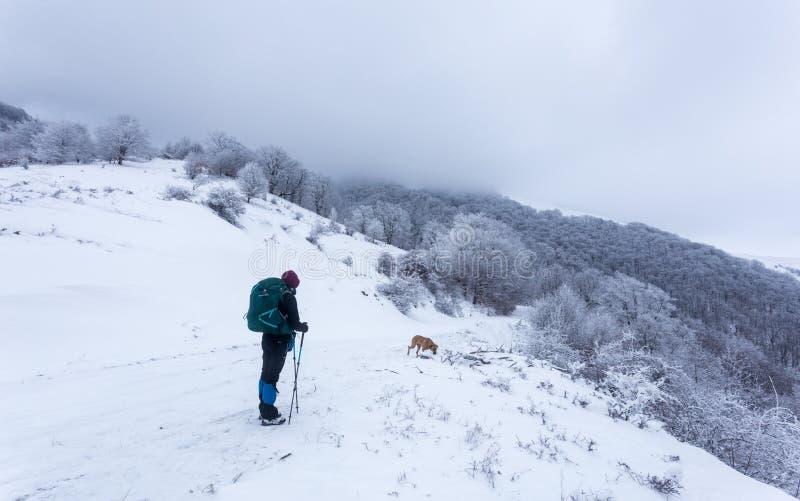 Chica joven que camina a través del tiempo frío en las montañas de Rumania fotos de archivo