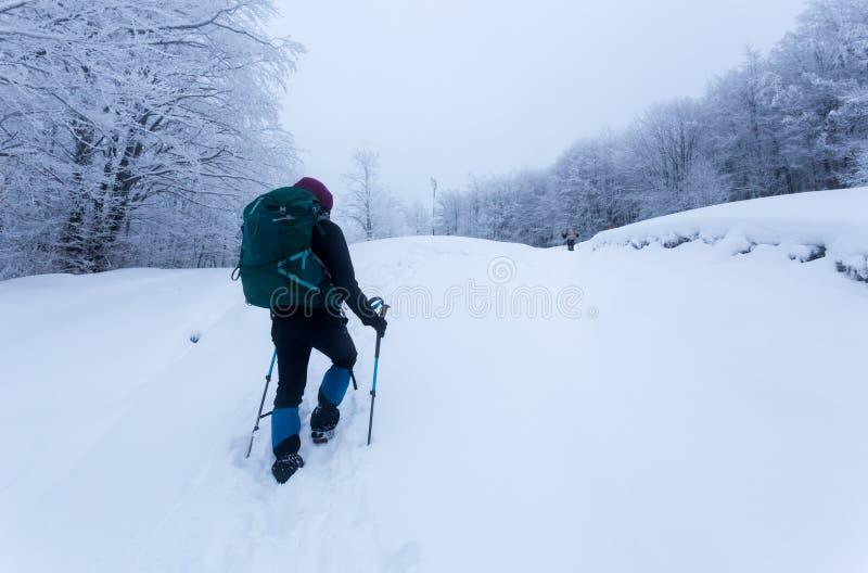 Chica joven que camina a través del tiempo frío en las montañas de Rumania fotografía de archivo libre de regalías
