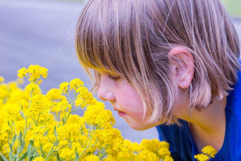 Chica joven que huele las flores amarillas foto de archivo